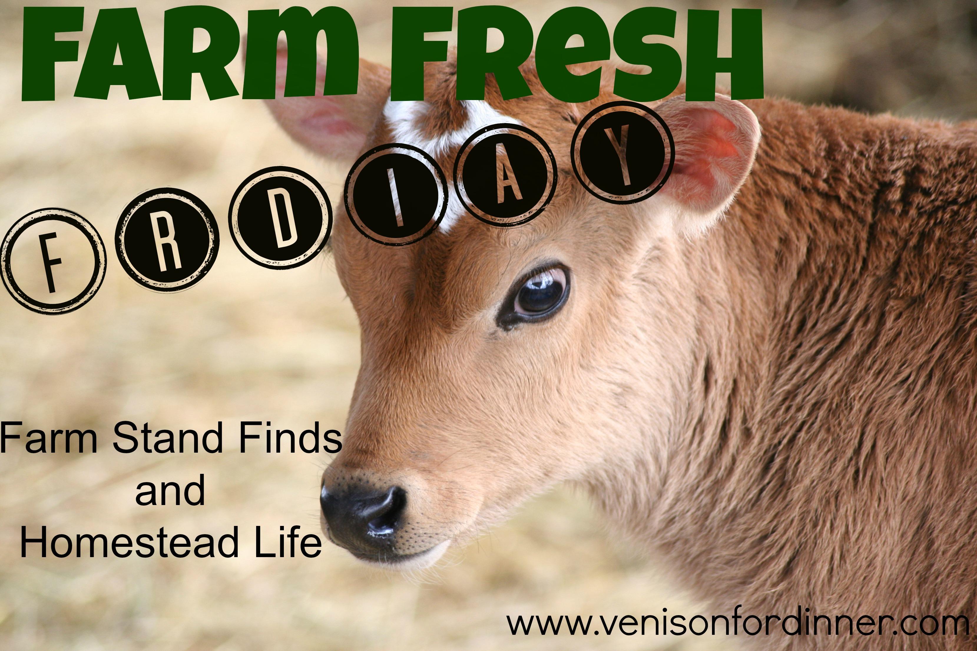 farm fresh friday