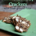Soaked, Whole Grain Raincoast Crisp Seedy Crackers