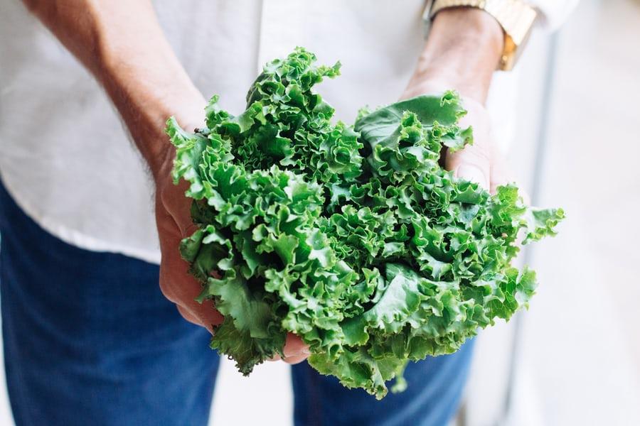 Dehydrator Kale Chips