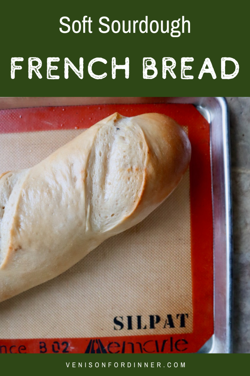 french bread soft sourdough